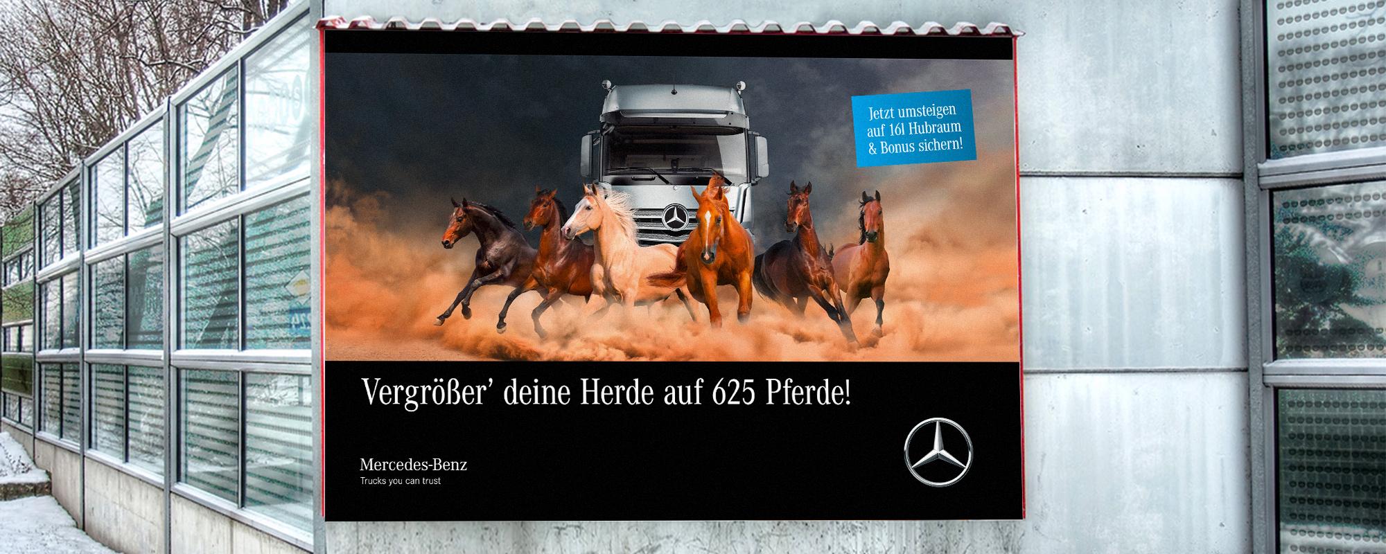 GWF_Web_Mercedes_Pferde